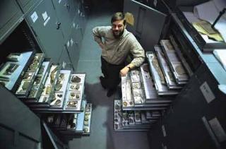 化石收藏室