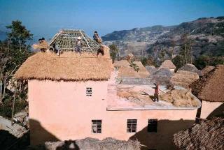 稻草覆蓋屋頂