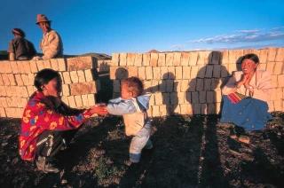 曝曬土坯磚