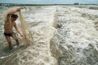 河川復育成功