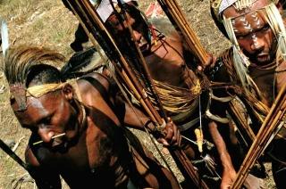 雅利族與拉尼族戰士