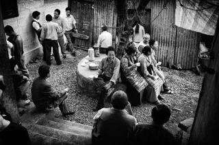 藏民協會代表