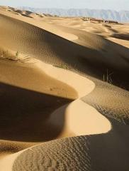 庫布齊沙漠