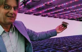 LED燈科技