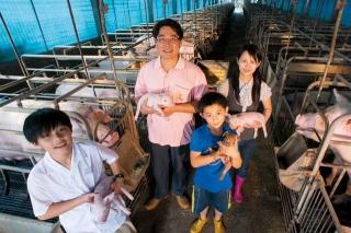 乾淨的養豬場