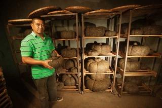 南瓜形狀的普洱茶餅