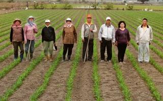 朴子雜糧產銷班