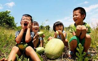 從小在田間玩耍、學習農事