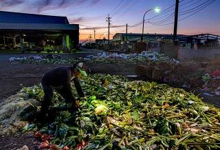 食物浪費的前線