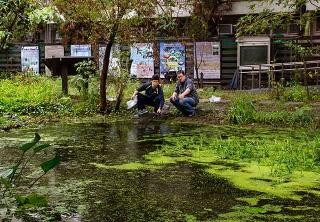 生態池改造