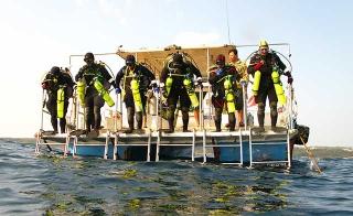 受過考古訓練的專業潛水人員