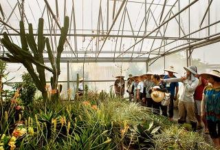 新社種苗改良繁殖場