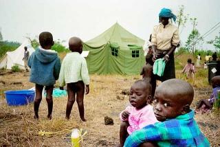 剛果戈馬城的孤兒營