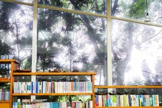 蔥鬱林木為伴