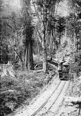 阿里山鐵路