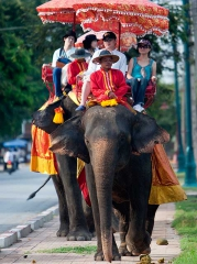中國遊客騎象