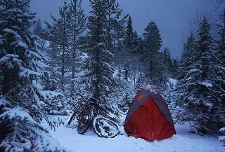 紮營冰雪森林