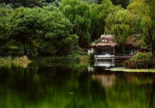 西湖浮雲堂茶書院