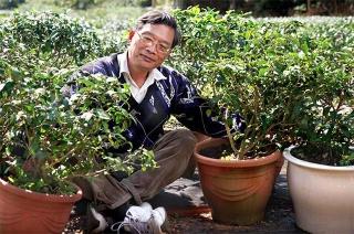 茶改場工作二十五年