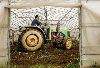 重型農機來整地
