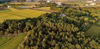 平地造林計畫