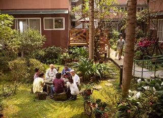 中庭種滿茂密植栽