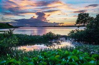 東沙小潟湖