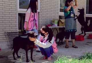 桃園市動物保護教育園區的志工