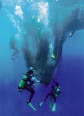 稱為「鬼網」的廢棄漁網