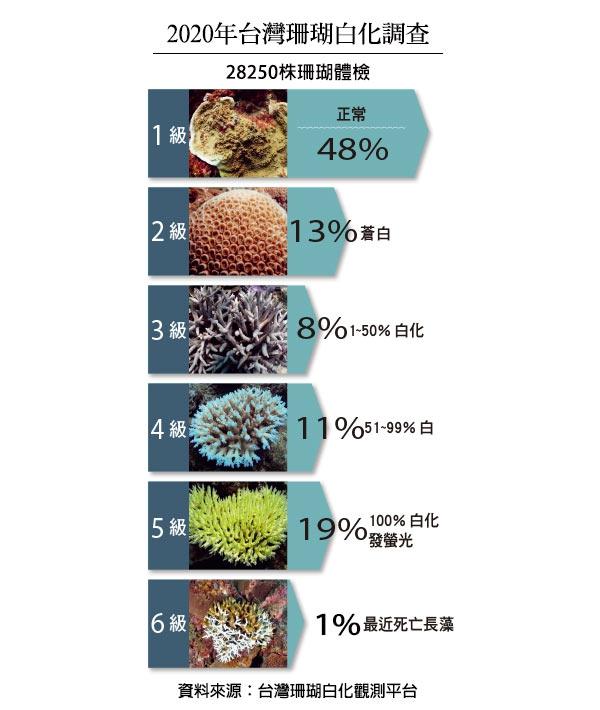 珊瑚死亡率
