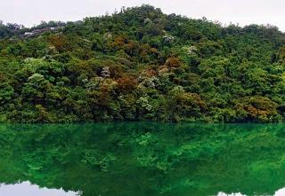 台灣淺山生態