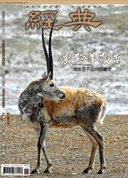 vol.098 >2006.09 藏羚羊