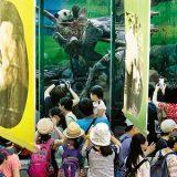 zoo_720