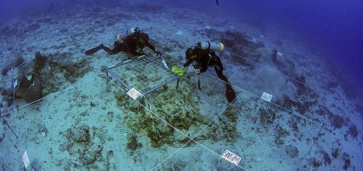 underwater_720
