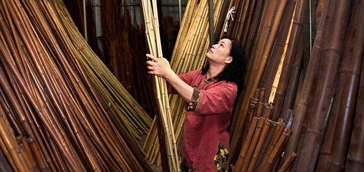 bamboo_720